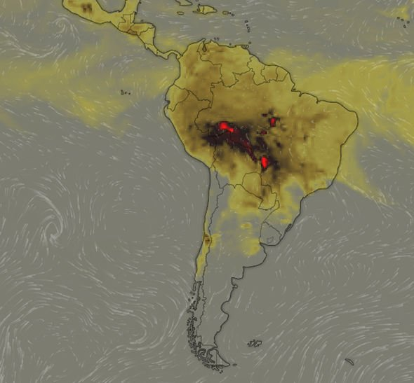 NEWS: World's Largest Tropical Rainforest is on Fire
