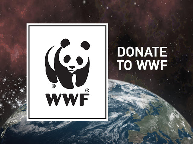 Donate to WWF