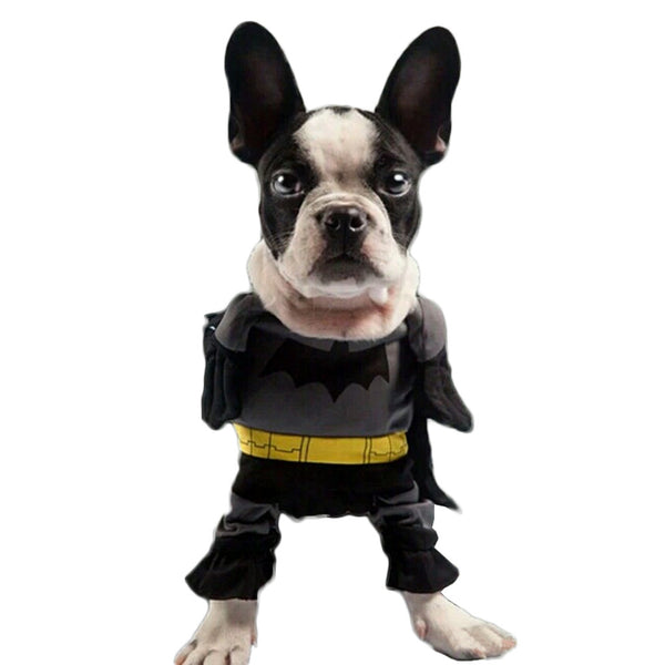 Batman Dog Costume - Haute Dog Shop