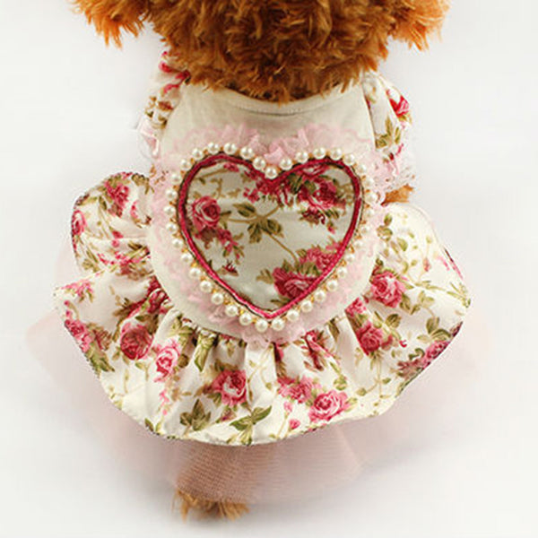 Daisy Picnic Dress - Pink - Haute Dog Shop