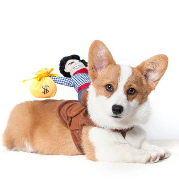 Buffalo Bill Cowboy Rider Dog Costume - Haute Dog Shop