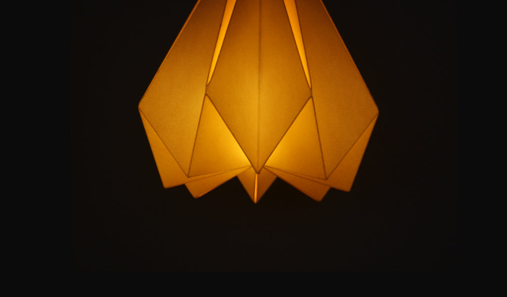 Shop for Origami Lampshade at India Environment Festival, Ahmedabad