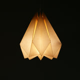 Buy origami pendant lamp online India
