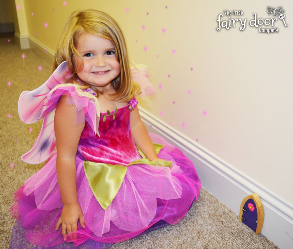 Fairy Dress Up Costume