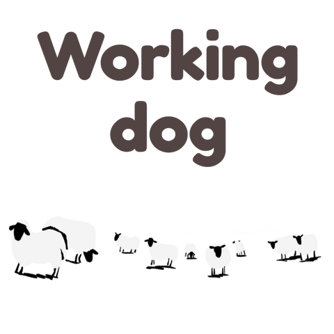 9. Working Dog Food