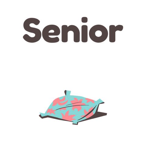 3. Senior dog food