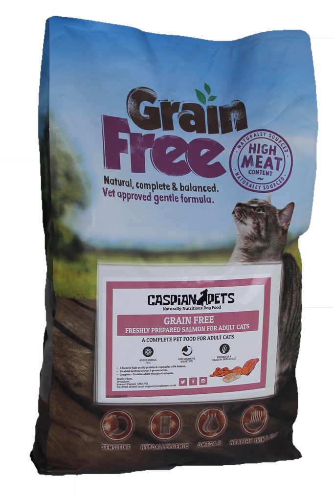 Grain Free Dry Cat Food Fresh Salmon