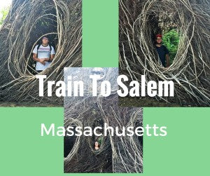 Train To Salem