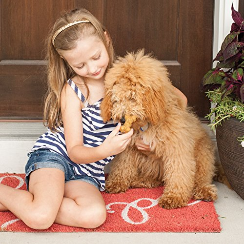 Nordic Ware Pampered Pets Bone Treat - girl giving to dog