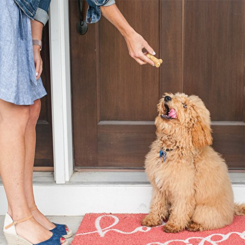 Nordic Ware Pampered Pets Bone Treat - giving to dog