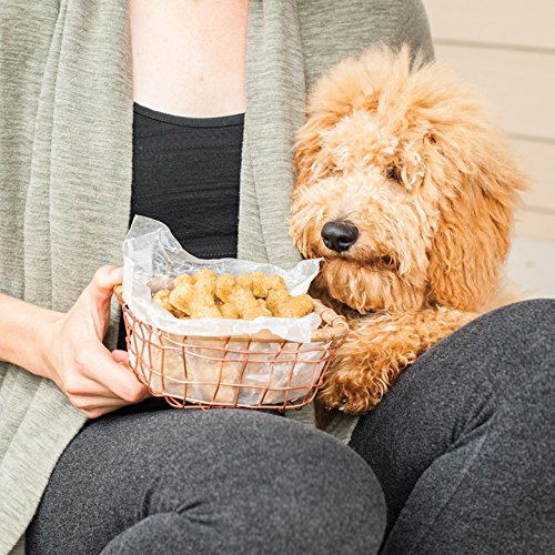 Nordic Ware Pampered Pets Bone Treats in basket with dog looking at them