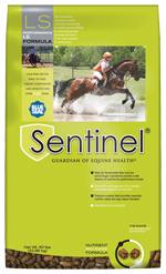 Blue Seal Sentinel Performance LS Horse Feed