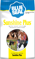 Blue Seal Sunshine Plus