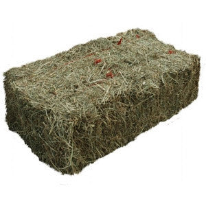 First Cut Hay - Bale