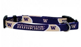University of Washington Dog Collar
