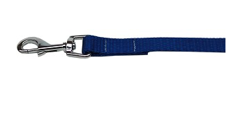 Customized Leashes