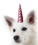 Unicorn Horn For Dogs