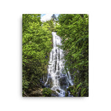 Mingo Falls North Carolina Canvas