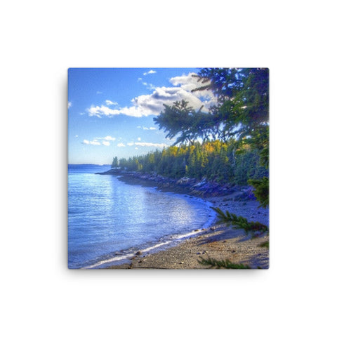 Maine Coast Canvas