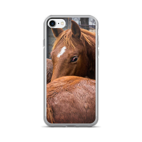 Curious Weanling Horse iPhone 7/7 Plus Case