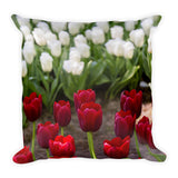 Red & White Tulips - Keukenhoff Garden- Netherlands Pillow