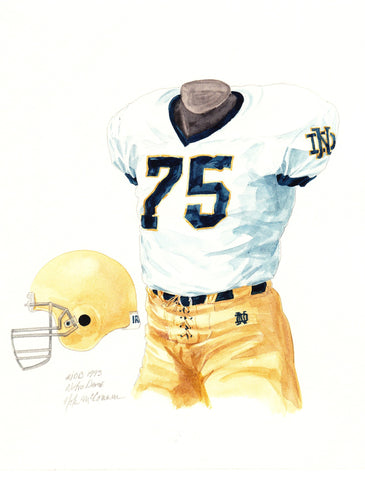 Notre Dame Fighting Irish 1993 - Heritage Sports Art - original watercolor artwork - 1