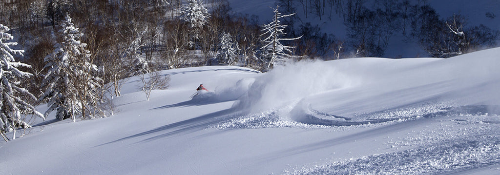 Powder Skier's Choice