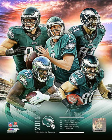 Philadelphia Eagles 2015 Team Composite