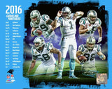 Carolina Panthers 2016 Team