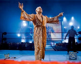 Ric Flair - 16x20 Photo