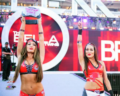 Bella Twins (Nikki & Brie) - WWE WrestleMania 31 Photo #16 - maniacjoe