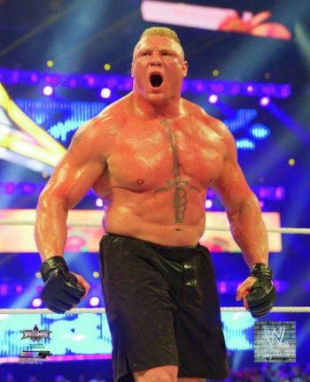 Brock Lesnar - WWE Photo #4