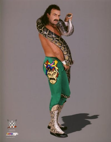 Jake The Snake Roberts - WWE Photo #3