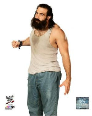 Luke Harper - WWE Photo #1