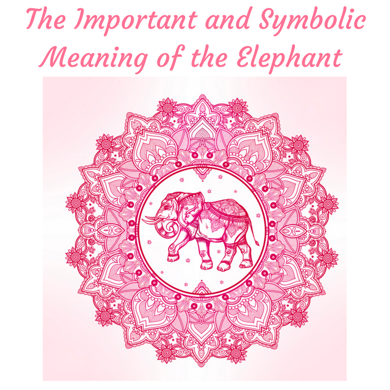The Important And Symbolic Meaning Of The Elephant Red