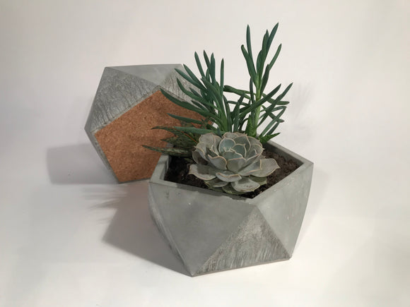 Large Geometric Concrete Planter