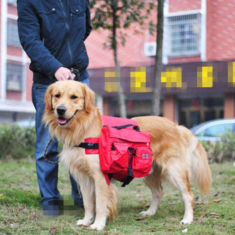 Big Dog backpack pet dog from carrying out the bag-type dog golden animal husbandry Samo Su tricolor