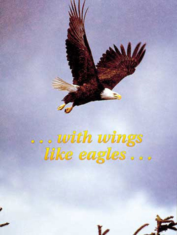 Promotion Eagle All Ages Folded Certificate (Package of 6)