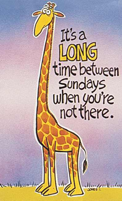 Postcard-It's Been Long A Time Between Sundays/Giraffe (Matthew 5:6 KJV) (Pack of 25)
