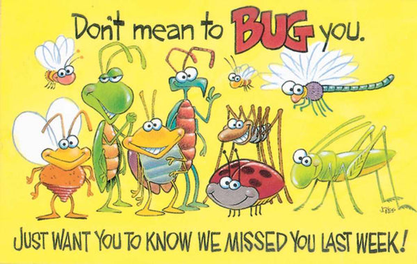 Postcard-Don't Mean To Bug You/Bugs (Proverbs 17:17 NIV) (Pack of 25)