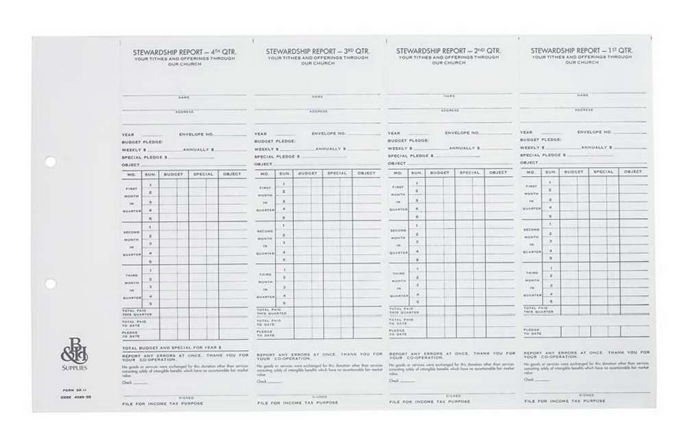 Finance-Individual Stewardship Record & Report w/IRS Statement (Form SR-11) (Pack of 100)
