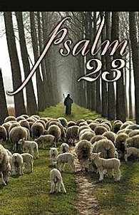 Psalm 23 Pamphlet (Pack of 5)