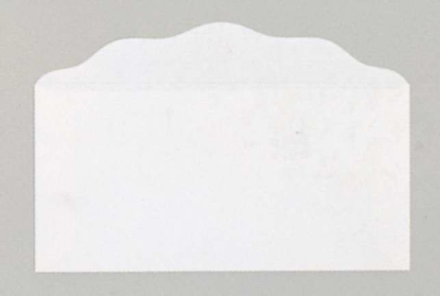 Offering Envelope-Blank (Bill-Size)-White (Pack Of 100)