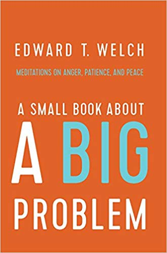 A Small Book About a Big Problem: Meditations on Anger, Patience & Peace