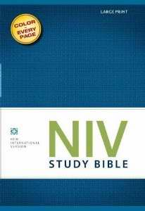 NIV Study Bible, Leathersoft, Brown/Black, Red Letter Edition, Thumb Indexed