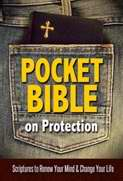 Pocket Bible On Protection (Not Available-Out Of Print)