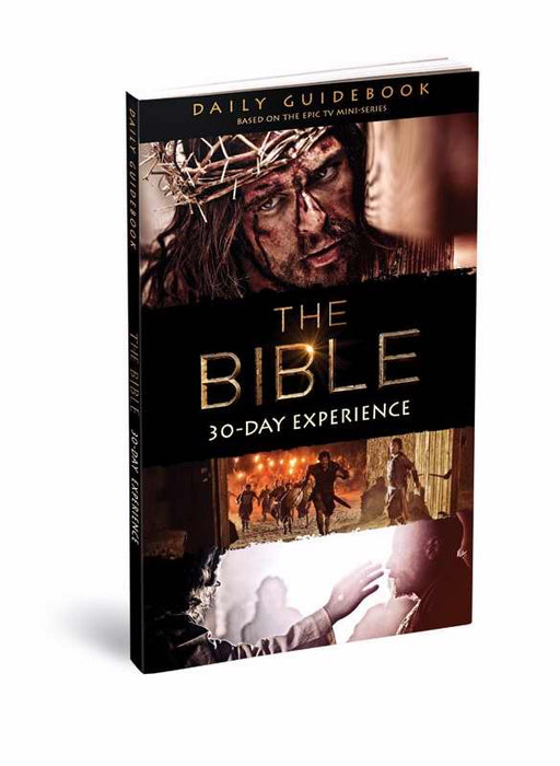 Bible Miniseries 30-Day Church Experience Guidebook