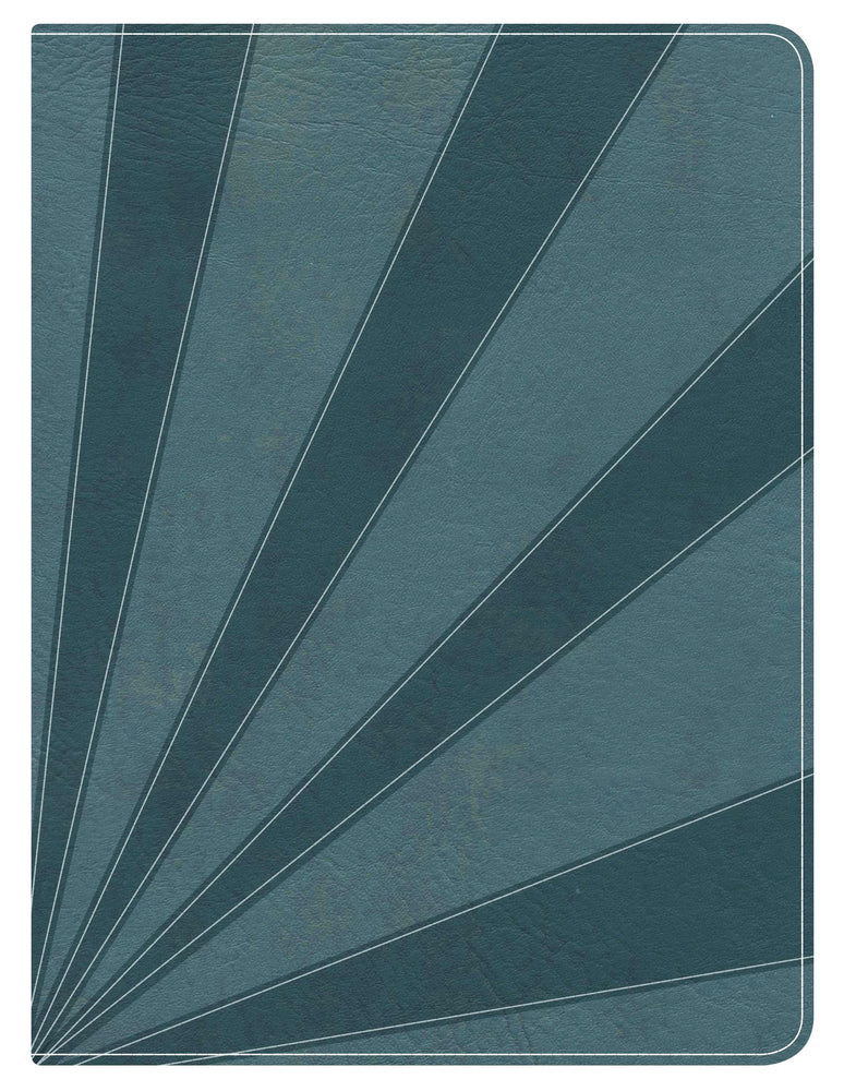 Apologetics Study Bible for Students, Steel Blue LeatherTouch