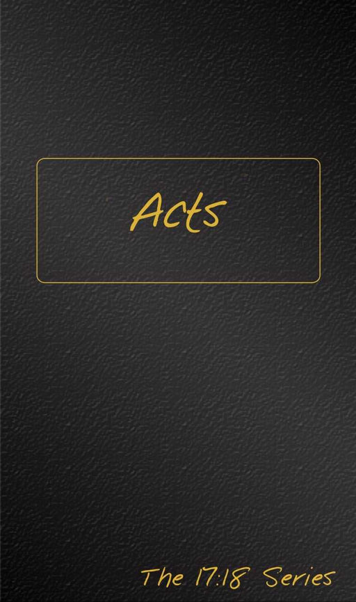 Acts: Journible (The 17:18 Series)