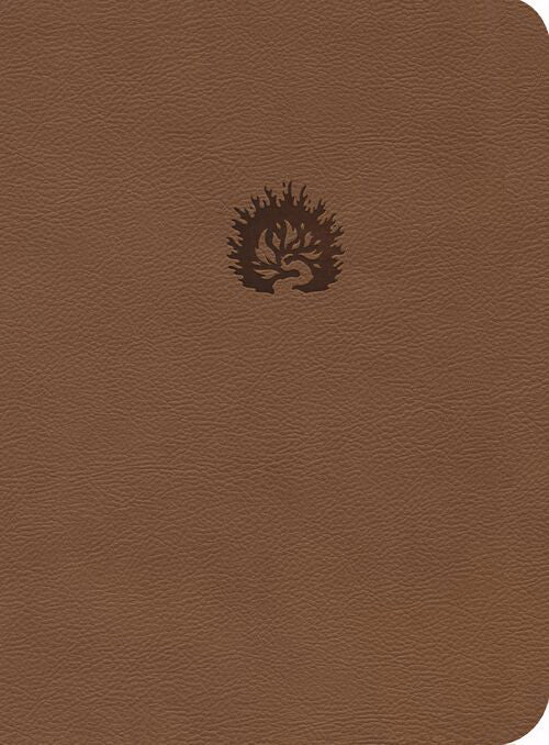 NKJV Reformation Study Bible, Light Brown, Leather-Like